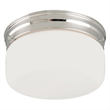 "2-Light 8"" Ceiling Mount"