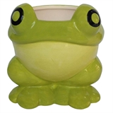 "5"" Ceramic Teacup Frog Planter, #308478"