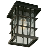 Townsend 1-Light Indoor/Outdoor Ceiling Mount, Statuary Bronze #508283